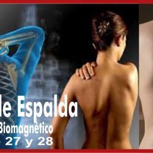 Curso de Biomagnetismo por Centro Magnetico y Martha Garza