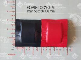 FOPIELCCYG-Ma